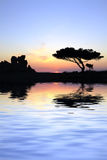 ναοί ηλιοβασιλέματος Στοκ Εικόνες