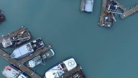 Ναυτικά θαλάσσια σκάφη Ομήρου Αλάσκα κόλπων Kachemak σκαφών βαρκών απόθεμα βίντεο