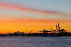 ναυτιλία ΑΜ αυγής γερανών Στοκ Εικόνα