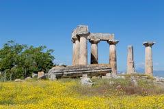 Ναός απόλλωνα, αρχαίο Corinth, Ελλάδα Στοκ εικόνες με δικαίωμα ελεύθερης χρήσης
