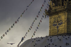 Ναός Α πιθήκων Κ Ένα Swayambhunath Στοκ φωτογραφία με δικαίωμα ελεύθερης χρήσης