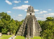 Ναός Γουατεμάλα ιαγουάρων Tikal Στοκ εικόνες με δικαίωμα ελεύθερης χρήσης