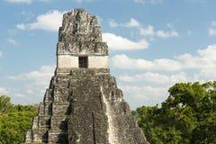 Ναός Γουατεμάλα ιαγουάρων Tikal Στοκ Εικόνες