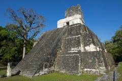 Ναός ΙΙ πυραμίδων στην αρχαία πόλη της Maya Tikal στη Γουατεμάλα Στοκ εικόνα με δικαίωμα ελεύθερης χρήσης