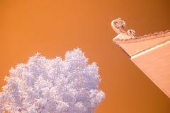 Ναός και μπαμπού Στοκ φωτογραφία με δικαίωμα ελεύθερης χρήσης