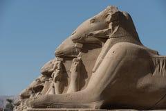 ναός σειράς της Αιγύπτου karnak thebes Στοκ φωτογραφίες με δικαίωμα ελεύθερης χρήσης