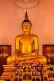ναός Ταϊλανδός Ναός Phuket, Ταϊλάνδη Mongkol Nimit Wat Χρυσό εσωτερικό του Βούδα Στοκ Εικόνα