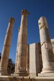 ναός της Ιορδανίας artemis jerash Στοκ Εικόνα