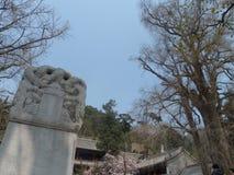 Ναός της Κίνας Πεκίνο tanzhe Στοκ φωτογραφία με δικαίωμα ελεύθερης χρήσης