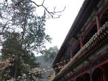 Ναός της Κίνας Πεκίνο tanzhe Στοκ Φωτογραφίες