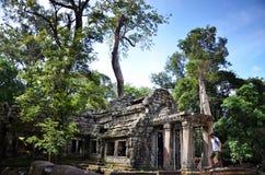 ναός της Καμπότζης prohm TA angkor Στοκ φωτογραφίες με δικαίωμα ελεύθερης χρήσης