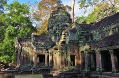 ναός της Καμπότζης prohm TA angkor wat Στοκ Εικόνες