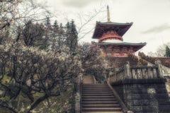Ναός της παγόδας ειρήνης, βουδιστικός ναός shinshoji Naritasan, Nar Στοκ φωτογραφία με δικαίωμα ελεύθερης χρήσης