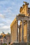 Ναός της Ρώμης Antoninus και Faustina Στοκ φωτογραφία με δικαίωμα ελεύθερης χρήσης