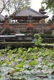 Ναός του Μπαλί Saraswati σε Ubud, Μπαλί Στοκ φωτογραφίες με δικαίωμα ελεύθερης χρήσης