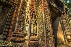 Ναός του TA Prohm, Καμπότζη Στοκ Φωτογραφία