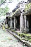 Ναός του TA -TA-prom Καμπότζη Ο ναός που ονομάζεται προς τιμή τη Angelina Jolie Στοκ Εικόνα