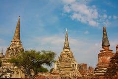 Ναός Ayutthaya σύνθετος Στοκ Εικόνα