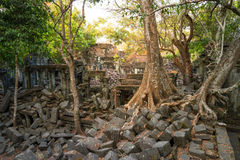 Ναός Beng Mealea, Angkor Wat, Καμπότζη Στοκ φωτογραφίες με δικαίωμα ελεύθερης χρήσης