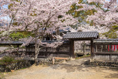 Ναός Daikaku-daikaku-ji στο arashiyama, Κιότο, Ιαπωνία Στοκ φωτογραφία με δικαίωμα ελεύθερης χρήσης