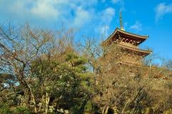 Ναός dera Kiyomizu στο Κιότο, Ιαπωνία Στοκ φωτογραφίες με δικαίωμα ελεύθερης χρήσης