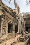 Ναός Khan Preah σε Angkor Thom Στοκ Φωτογραφία