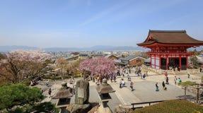 Ναός Kiyomizu και άνθος κερασιών στο Κιότο στοκ φωτογραφία