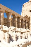 ναός luxor της Αιγύπτου στηλών karn Στοκ Φωτογραφία