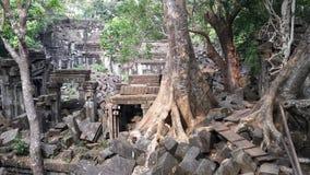 Ναός Mealea Beng η banteay λίμνη της Καμπότζης angkor lotuses συγκεντρώνει siem το ναό srey Καμπότζη Στοκ εικόνες με δικαίωμα ελεύθερης χρήσης