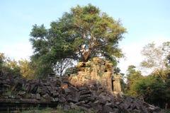 Ναός Mealea Beng Καμπότζη η banteay λίμνη της Καμπότζης angkor lotuses συγκεντρώνει siem το ναό srey Στοκ φωτογραφίες με δικαίωμα ελεύθερης χρήσης
