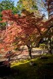 Ναός Shinnyodo το φθινόπωρο στο Κιότο στοκ εικόνες με δικαίωμα ελεύθερης χρήσης