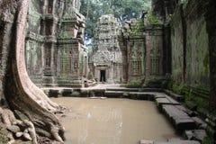 Ναός TA Prohm Καμπότζη Το Siem συγκεντρώνει την επαρχία Το Siem συγκεντρώνει την πόλη Στοκ εικόνα με δικαίωμα ελεύθερης χρήσης