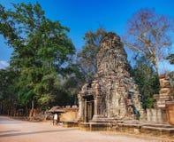 Ναός TA Prohm σε Angkor σύνθετο, Καμπότζη Στοκ Εικόνα