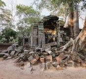 Ναός TA Prohm σε Angkor σύνθετο, Καμπότζη Στοκ Φωτογραφίες