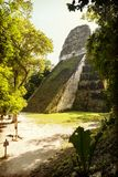 Ναός 5 Tikal Γουατεμάλα Στοκ φωτογραφία με δικαίωμα ελεύθερης χρήσης