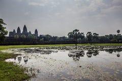 Ναός Wat Angkor σύνθετος, Καμπότζη Στοκ Εικόνες