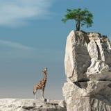 Να ανατρέξει στο δέντρο διανυσματική απεικόνιση
