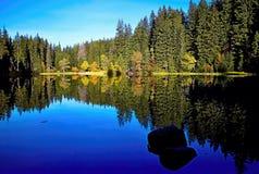 Να αντανακλάσει στη στάθμη ύδατος του Vrbicke Tarn στην κοιλάδα Demanovska στη Σλοβακία Στοκ Φωτογραφία
