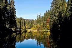 Να αντανακλάσει στη στάθμη ύδατος του Vrbicke Tarn στην κοιλάδα Demanovska στη Σλοβακία Στοκ φωτογραφίες με δικαίωμα ελεύθερης χρήσης
