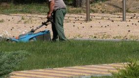 Να απασχοληθεί στους κηπουρούς κόβει τη χλόη με έναν ηλεκτρικό θεριστή χορτοταπήτων απόθεμα βίντεο