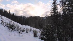 να είστε απολύτως ευτυχής ακούει το ι εάν τα βουνά εικόνας ευχαριστούν χρησιμοποιημένος όπου ο χειμώνας εσείς Χειμερινό δάσος από φιλμ μικρού μήκους