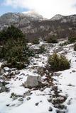 να είστε απολύτως ευτυχής ακούει το ι εάν τα βουνά εικόνας ευχαριστούν χρησιμοποιημένος όπου ο χειμώνας εσείς Στοκ Εικόνες