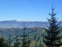 να είστε απολύτως ευτυχής ακούει το ι εάν τα βουνά εικόνας ευχαριστούν χρησιμοποιημένος όπου ο χειμώνας εσείς στοκ φωτογραφίες με δικαίωμα ελεύθερης χρήσης