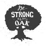 Να είστε ισχυρός ως δρύινο letterin στο δρύινο δέντρο Στοκ Φωτογραφίες
