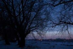 να είστε μπορεί να σχεδιάσει το χρησιμοποιημένο νύχτα χειμώνα τοπίων απεικόνισής σας δέντρα σκιαγραφιών Στοκ Φωτογραφία