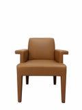 Να δειπνήσει καρέκλα στο άσπρο υπόβαθρο απομονώσεων Στοκ Εικόνες