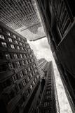Να εξετάσει επάνω τους ουρανοξύστες στη Νέα Υόρκη Στοκ Εικόνα