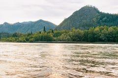 Να εξισώσει στα βουνά Altai ποταμών Katun στη Σιβηρία στη Ρωσία στοκ φωτογραφίες