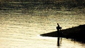 Να εξισώσει την αλιεία Στοκ εικόνα με δικαίωμα ελεύθερης χρήσης