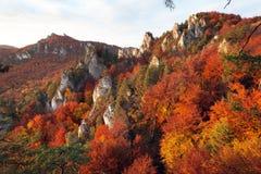 Να εξισώσει τη φθινοπωρινή κόκκινη χρωματισμένη άποψη από τα δύσκολα βουνά Sulov Στοκ φωτογραφίες με δικαίωμα ελεύθερης χρήσης